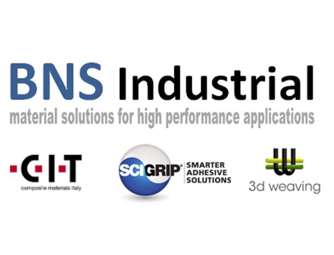 BNS Industrial BV logo